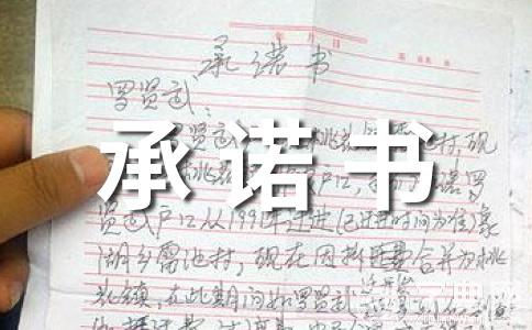 【热门】服务承诺书范文十四篇