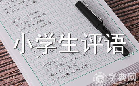 【精选】小学评语范文合集十篇