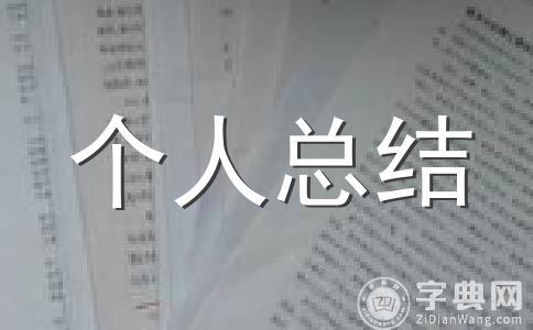 【精华】2011年个人工作总结范文集锦13篇
