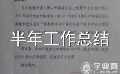 【精品】上半年总结范文集锦13篇