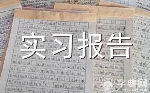 【必备】实习报告范文合集七篇