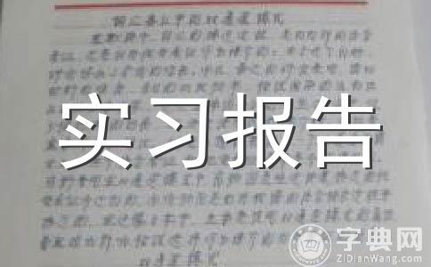 【推荐】实习报告模板范文五篇