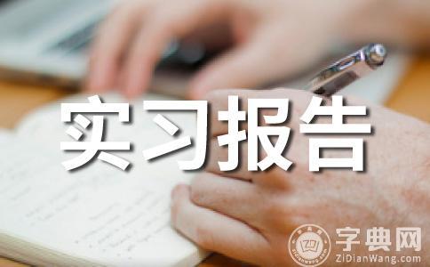 【热】大学生实践报告范文集锦十二篇